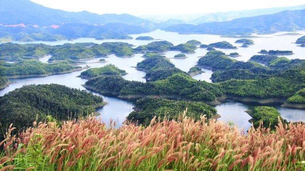 5. Khu bảo tồn thiên nhiên Tà Đùng (Đắk Nông)