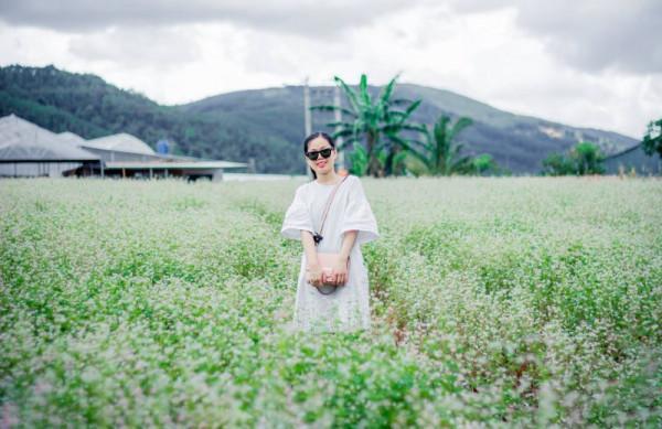Cánh đồng hoa Tà Nung