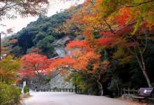Những địa điểm phải đến khi du lịch Osaka