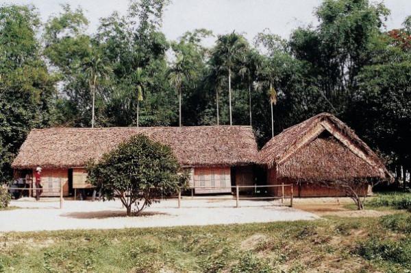 Làng sen quê hương chủ tịch Hồ Chí Minh
