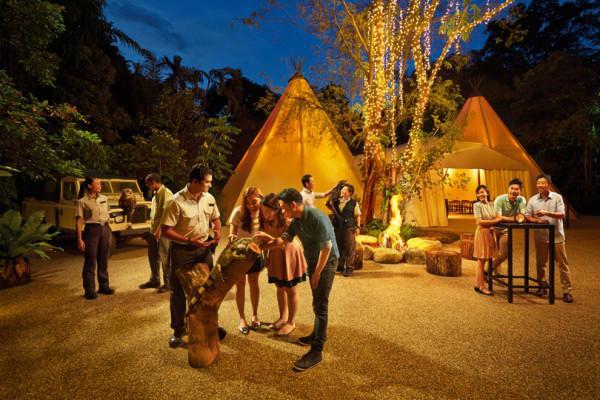 Night Safari2