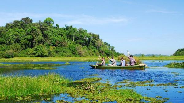 Vườn Quốc gia Nam Cát Tiên.