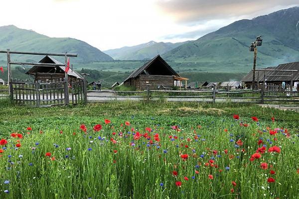 Thảo nguyên Yili (Y Lý).1