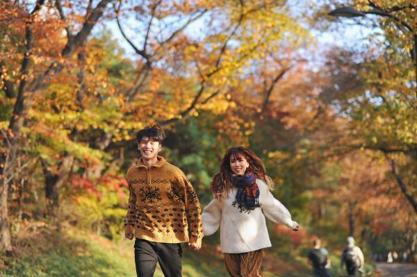 thiên đường mùa thu mang tên Hàn Quốc