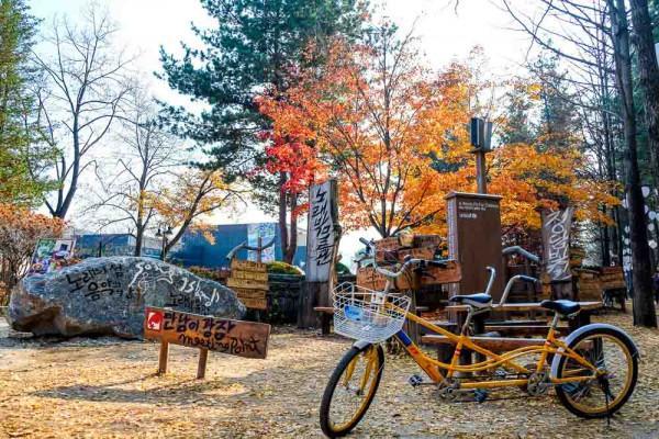 thiên đường mùa thu mang tên Hàn Quốc5