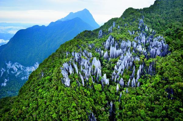 Gunung Mulu1