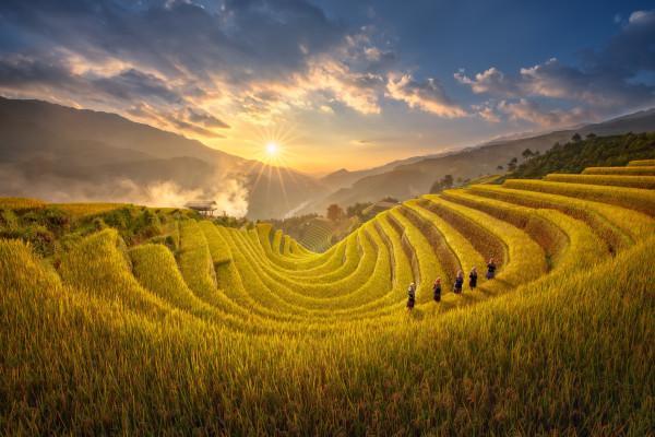 Những điểm du lịch Hà Nội say lòng du khách
