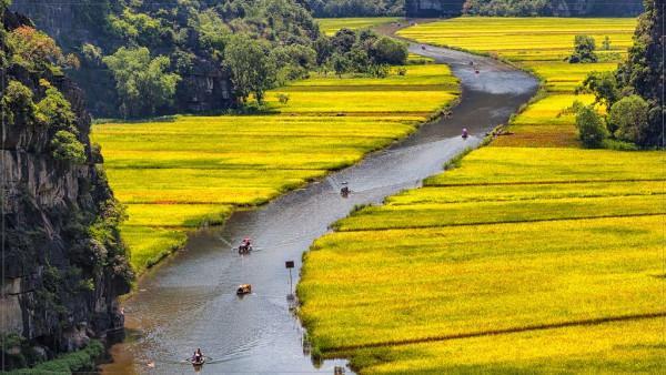 Sông Ngô Đồng 2