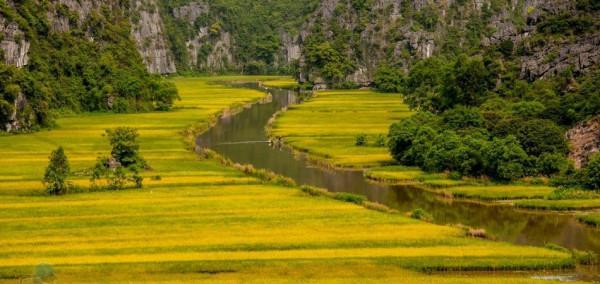 Sông Ngô Đồng 7
