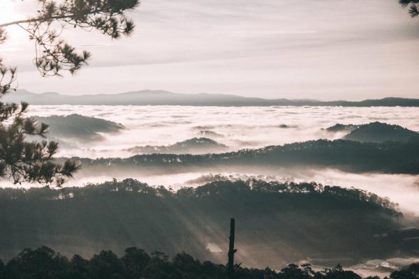 Vé máy bay giá rẻ tìm bình yên trên những ngọn đồi Đà Lạt