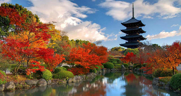 Vi vu Nhật Bản trọn vẹn với những điểm đến tuyệt đẹp