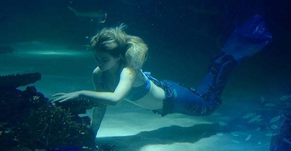 Thợ lặn thủy cung viện hải dương