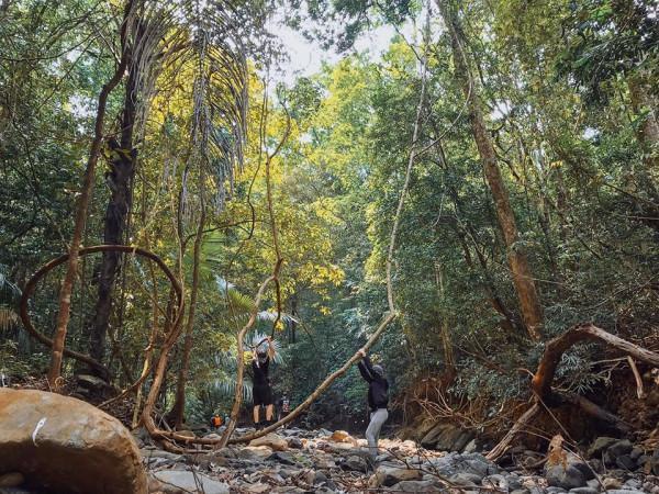 Vườn Quốc gia Bù Gia Mập7