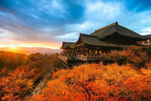 Viếng thăm đền chùa1