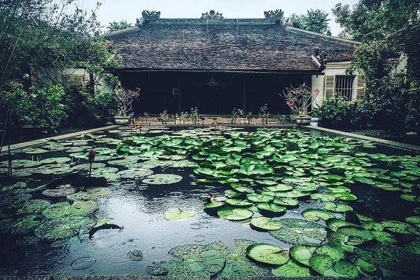 Nhà Vườn An Hiên1