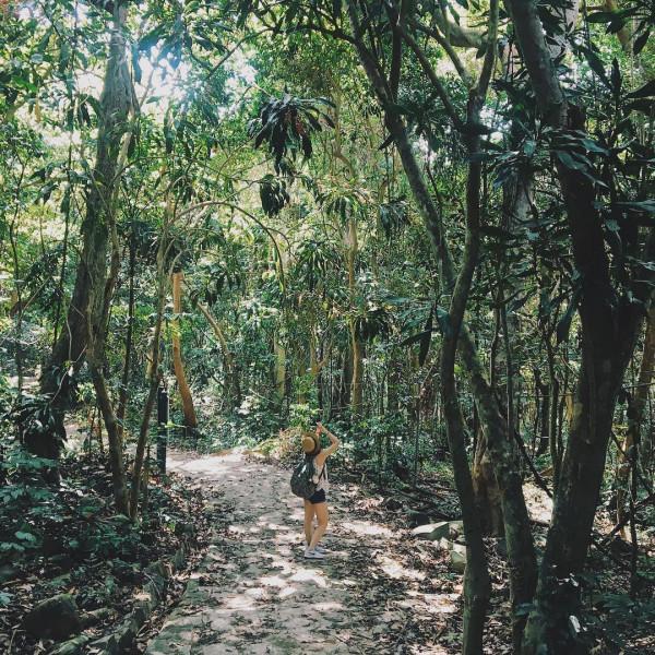 Vườn Quốc gia Côn Đảo1