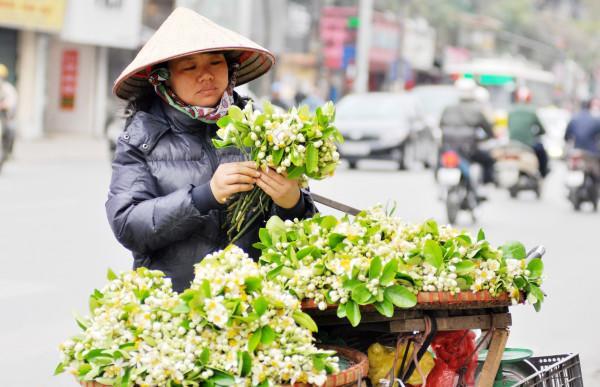 tháng 3 mùa hoa bưởi ở hà nội3