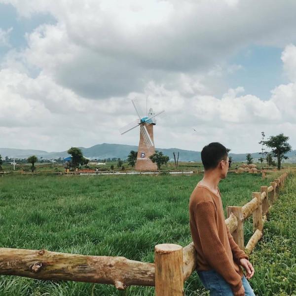 Đà Lạt Milk Farm1