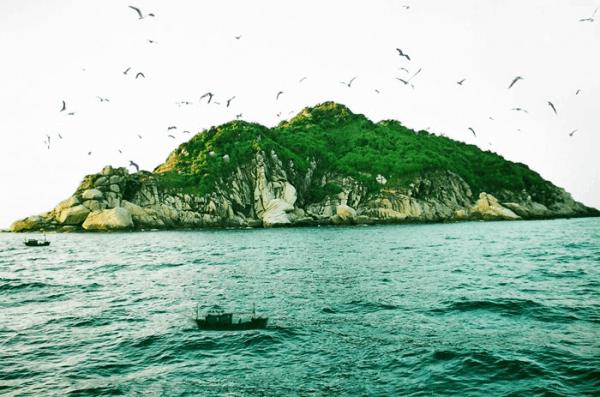 Đảo Yến1