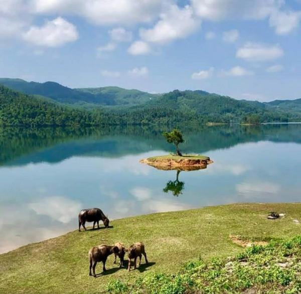 Vé máy bay giá rẻ du lịch đất Quảng