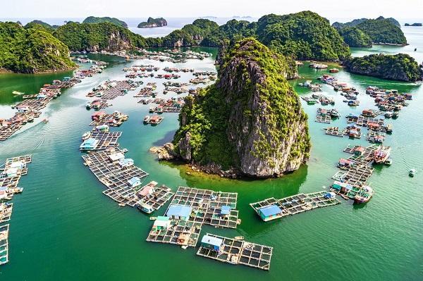 Du lịch đảo Cát Bà, Hải Phòng cùng vé máy bay giá rẻ