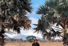 Săn vé tham quan các khu du lịch sinh thái An Giang nổi tiếng nhất