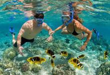 Săn vé chia sẻ cẩm nang du lịch đảo hòn Mun Nha Trang