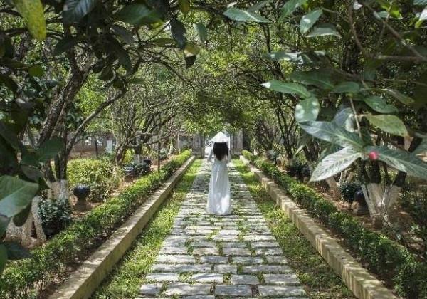 Khám phá nhà vườn cổ - chốn bình yên xứ Huế mang hơi thở lịch sử