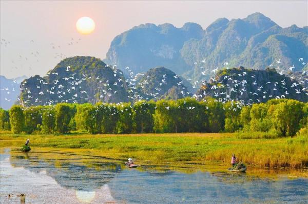 camnhi-202922032904-Vuon-chim-Thung-Nham-Ninh-Binh-2